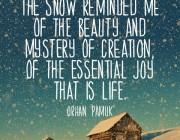 quote- Snow-pamuk